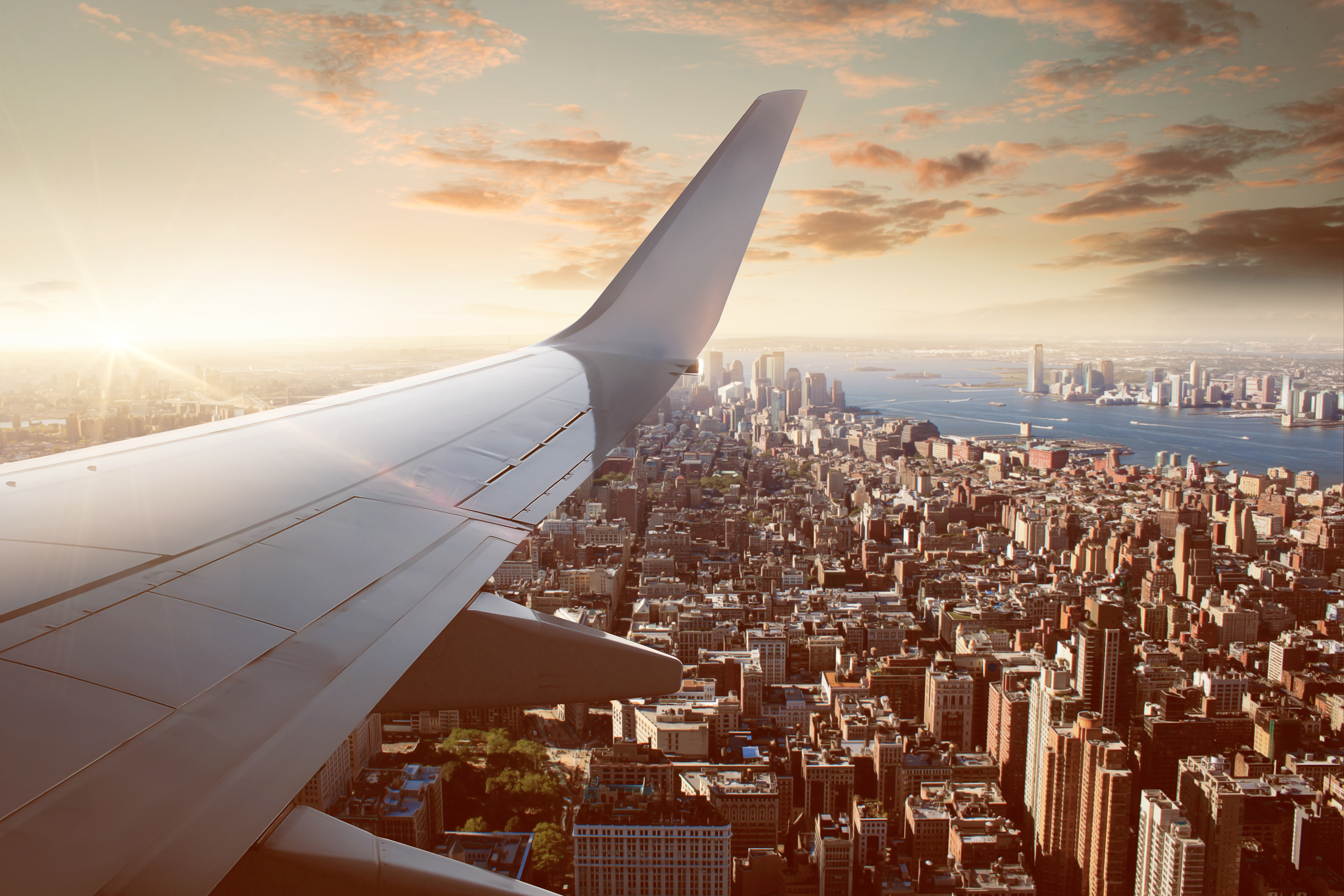 flight in the city last minute cheap deals