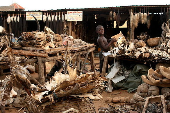 lome-bazaar-togo-most-terrifying-places-africa